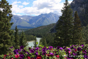 Cross 10 bucket list destinations off your list in one trip to the Canadian Rockies